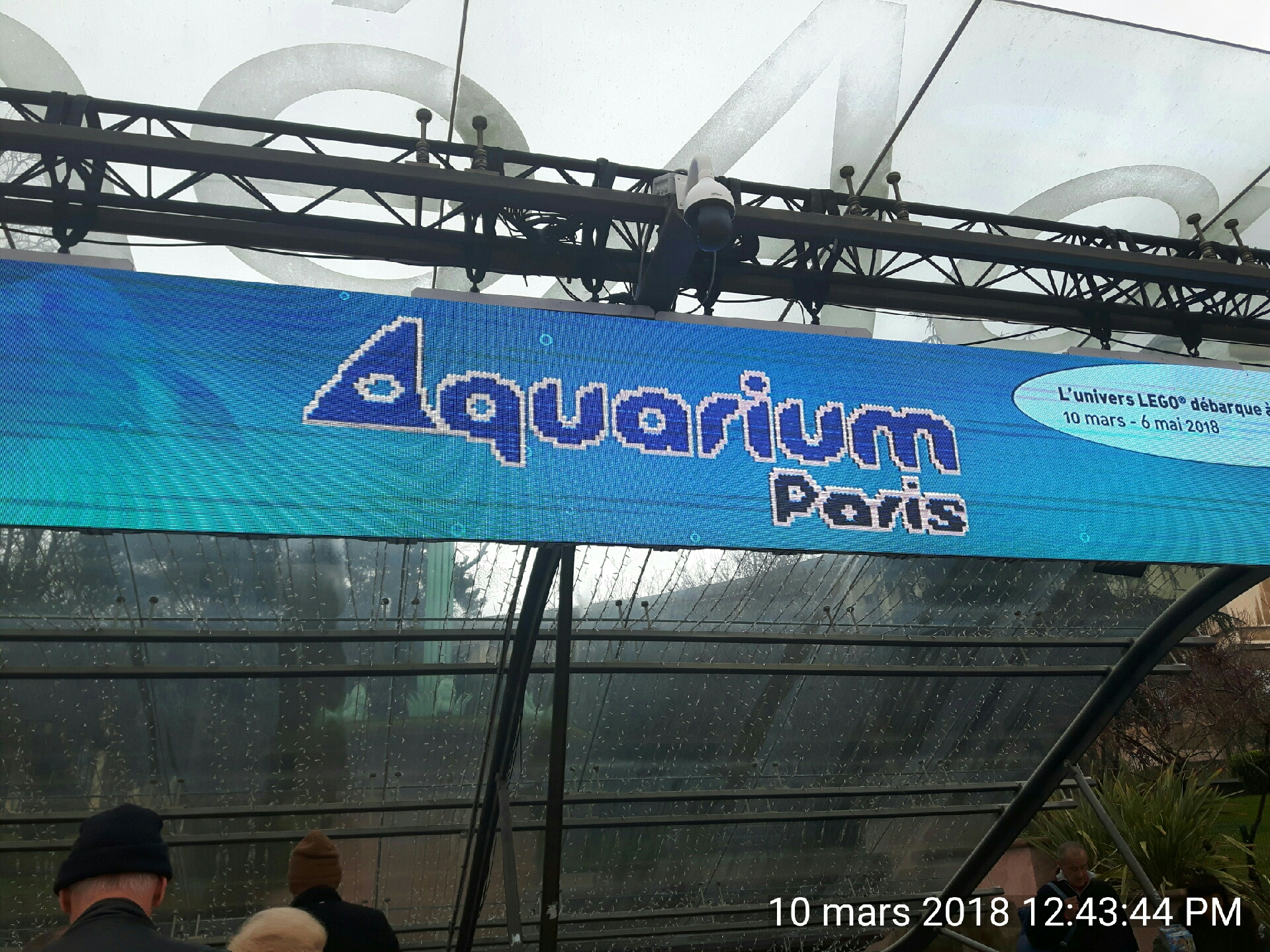 L'exposition Lego à l'Aquarium de Paris!